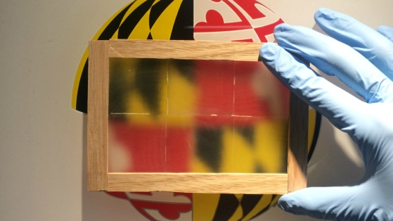 Wooden window pane over University of Maryland logo.