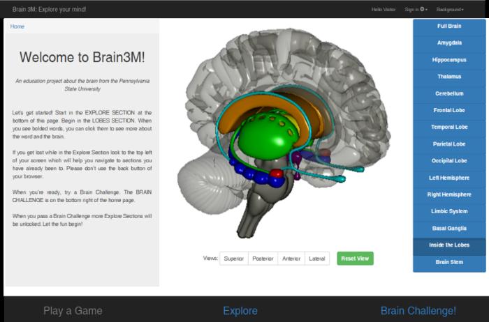 Screenshot of 3M project's interactive, online brain anatomy program.