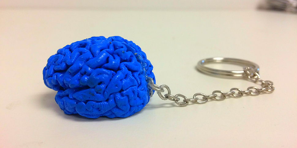 3D printed brain keychain for Penn State's 3M Project