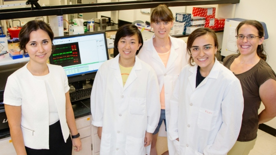 Team of University of Illinois researchers making headway in the fight against cancer.