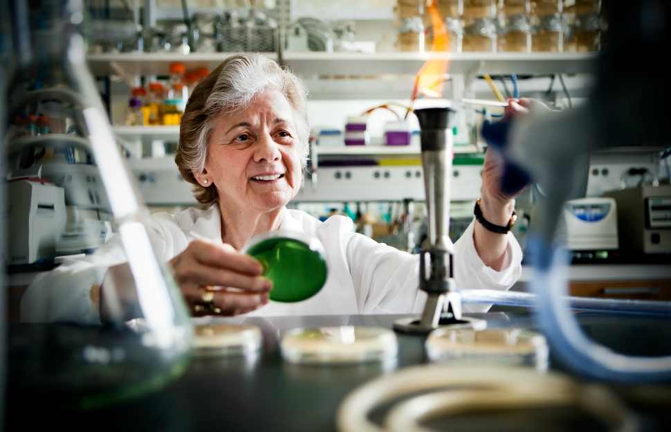 Portrait of Dr. Rita Colwell in her laboratory for the Maryland Pathogen Research Institute in the Department of Cell Biology & Molecular Genetics. TERP, Spring 2013.