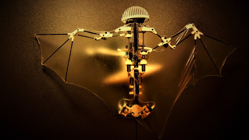 University of Illinois' Bat Bot