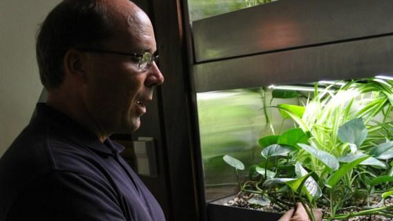 Purdue University professor Bill Hutzel working on the BioWall.