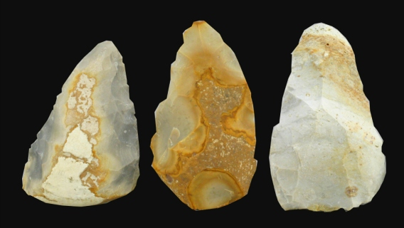 Arrowheads from University of Iowa grad Dr. Shelby Putt's research into stone age brain development