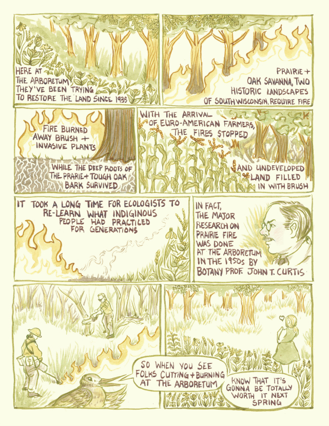 A pag from University of Wisconsin artist Liz Anna Kozik's prairie comic.