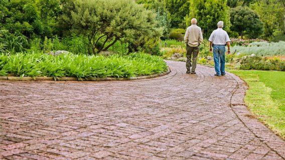 Two older men walking together in a park.