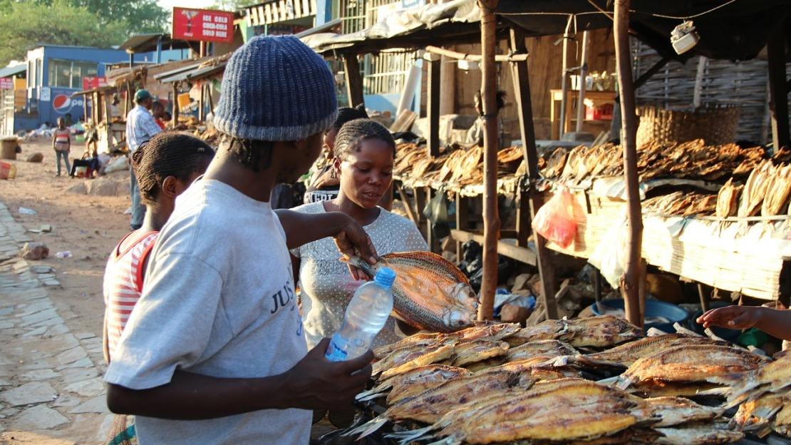 A woman selling fish at a market in Ghana