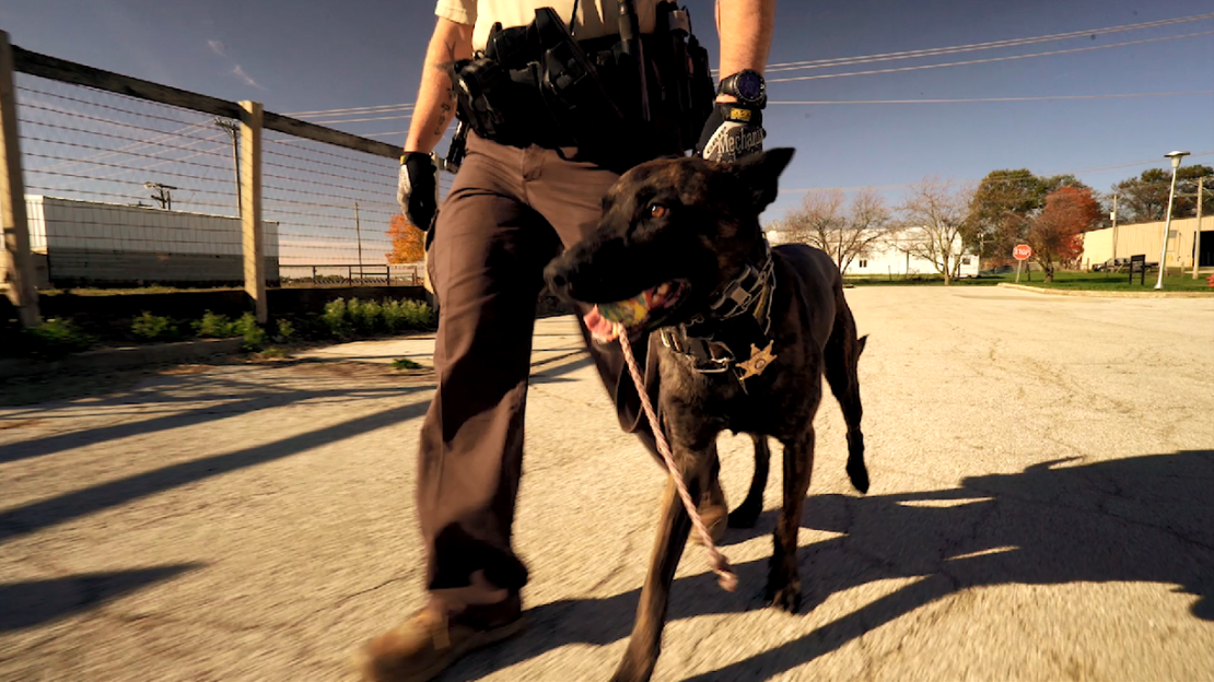 A Champaign county deputy and his K-9 partner.