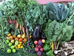 Produce grown in the Columbia Heights Green