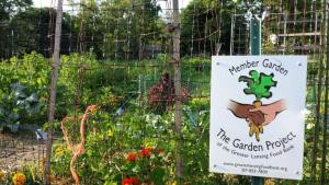 Greater Lansing Foodbank Garden Project
