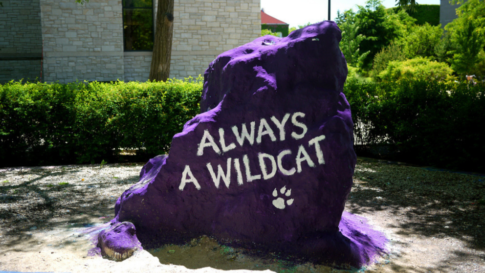 """The famous Northwestern University Rock painted to say """"Always a Wildcat."""""""