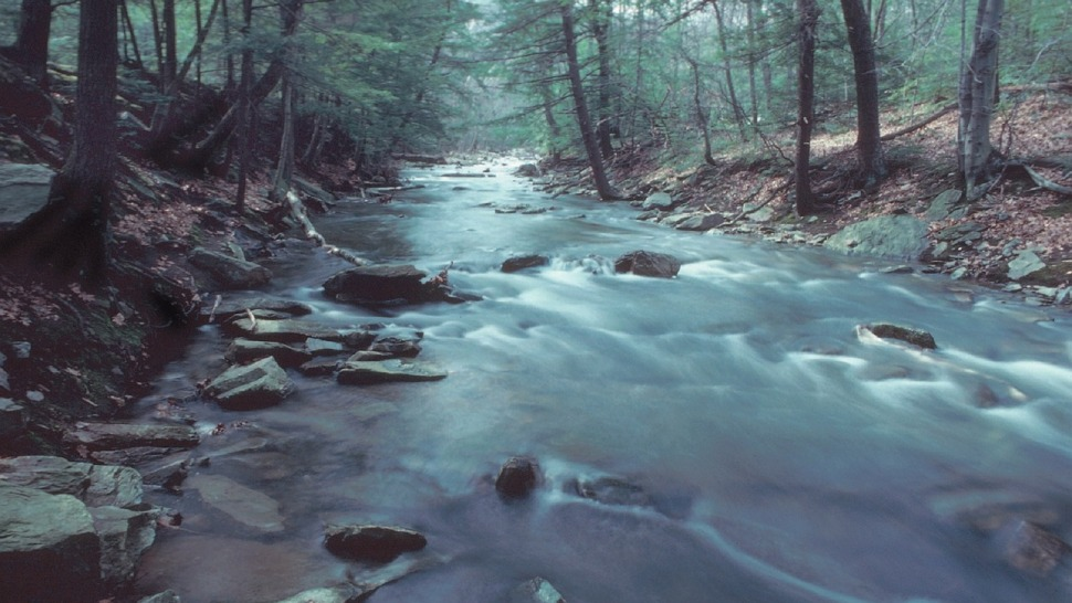 A stream in Maryland