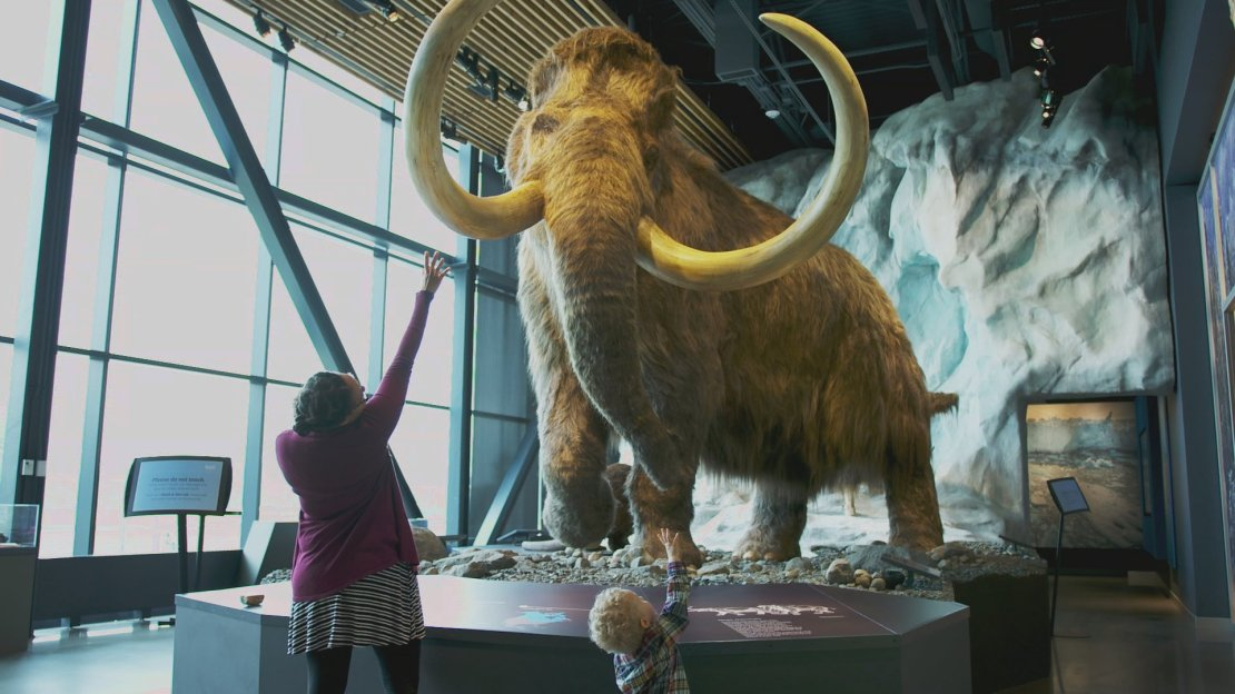 A mother and son stand in front of a mastodon model at the University of Minnesota's Bell Museum of Natural History