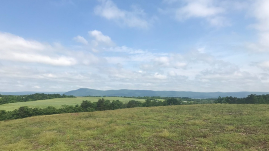 The site in Franklin County, Pennsyelvania where Penn State will build its new solar energy array