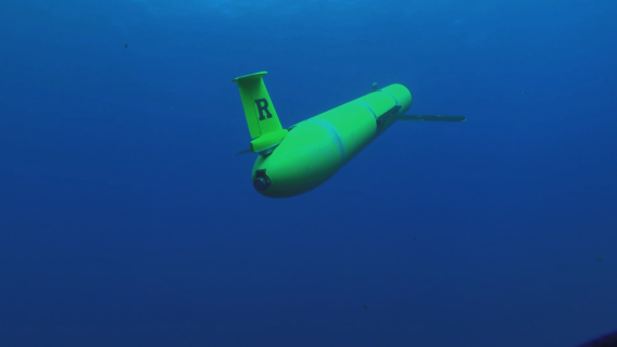 A Rutgers University Center for Ocean Observing Leadership underwater glider drone traveling through the ocean