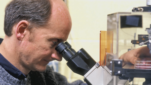 University of Wisconsin professor Jamie Thomson looking into a microscope.
